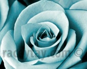 Teal Wall Art, Blue Rose, Flower Photography, Pastel Decor, Macro Close Up, Bedroom Wall Art, Paris Print