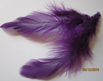 "Rooster Schlappen feathers - Strung Dyed PURPLE -(3"" strip of feathers) individual feather about 4.5"" long"