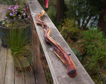 Manzanita Walking Stick (68)