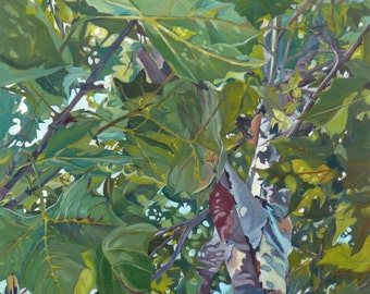 Summer Sycamore no. 6 Landscape Painting
