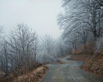 "Fine Art Photograph ""Rich Mountain Winter "" Appalachian Dirt Road Trees Winter Pastel Blue Fog Wall Art Cabin Decor Nature Print Dark Woods"