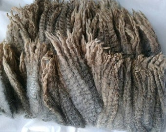 Gotland Corriedale Leicester X Raw Fiber / Spinning Wool (241)