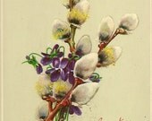 RESERVED LISTING (SABINE) Botanical Vintage Easter Postcard Pussy Willows and Spring Violets 1915 W H Bechtel Publisher