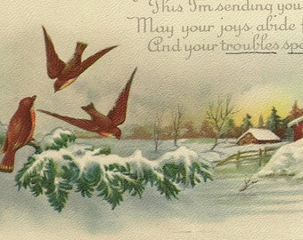 Trio of Winter Birds On Snow Covered Pine Branch Country Christmas Vintage Christmas Postcard Stecher Litho