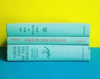 Tiffany Blue, Aqua Books Instant Library Collection Decorative Vintage Book Bundle Photography Props