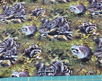 Wild Wings Masked Bandit Scenic Raccoon Cotton Fabric for Quilting and Sewing, Free Shipping.1/2 Yard 5177