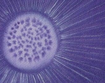 Purple Protist - watercolor of actinosphaerium