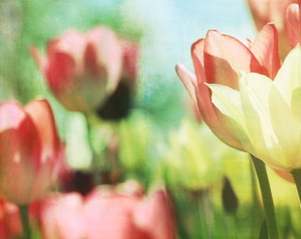 Tulips Flower Botanical Nature Digital Texture - 8 x 10 art print by Dawn Smith