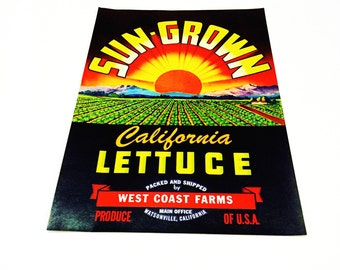 Vintage New Old Stock Unused SUN GROWN California Lettuce Vegetable Crate Label