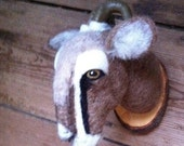ON SALE needlefelted goat mount