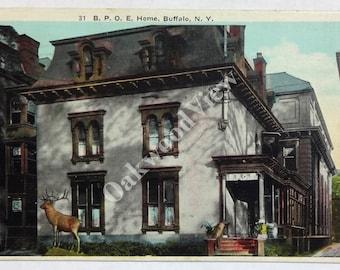 Buffalo New York BPOE Home Postcard, Elks Lodge, Fraternal Order, Northeast, Upstate, Antique 1925 Color Ephemera, FREE SHIPPING