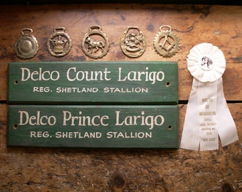 Vintage Green and White Wood Horse Stall Signs - Name Plates