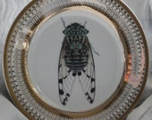 Gold Porcelain Cicada Bug Plates, Insect Dishes, Entomology Dishes, Cicada China, Foodsafe, PAYMENT PLATES AVAILABLE
