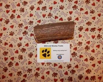 """Organic Large Elk Antler Dog Chew """"Made in Montana"""" (Lot C32)"""