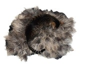 Cat Bed - Felted Wool Fleece Rug - Sheep-friendly Rustic Pet Bed - Navajo Churro Silver Black - Supporting US Small Farms