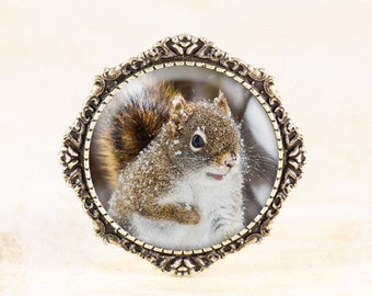 Snowy Squirrel Brooch - Winter Animal Jewelry, Red Squirrel Jewelry, Nature Brooch, Squirrel Animal Jewelry, Bronze Animal Brooch Pin
