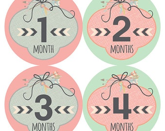 FREE GIFT, Pink Mint Gold Nursery Decor, Baby Girl, Tribal, Arrow Month Stickers, Monthly Baby Stickers Girl, Baby Shower Gift, New Baby