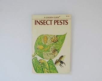 Insects Book, Field Guide to Insects Pests, Entomology, A Vintage Golden Guide Book, Illustrated Bugs