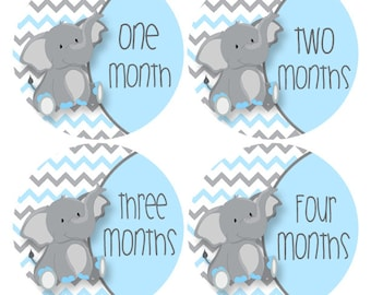 Elephant Monthly Stickers, Elephant Baby Photo Props, Blue Gray Baby Sticker Elephant Nursery Decor, Chevron Bodysuit Sticker (542B)