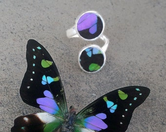 Real Butterfly Wing Ring - Adjustable Ring, Sterling Silver, Accessory, Natural, Purple