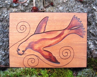 ATC ACEO Sea Lion with spirals on Cherry Wood Pyrography Woodburning