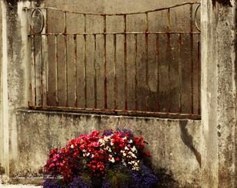 Ireland Photograph, County Mayo, Old Gate, Rustic, Kiltimagh, Irish Art, Romantic, Wrought Iron Gate, Travel Photography,Kitchen Art,Shabby