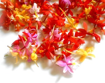 135 + Organic, MINIATURE EDIBLE ORCHIDS, Candied Orchids, Red, Pink, Orange, Yellow, Flowers, Bulk, Orchids, Wedding Cakes, Mixed Colors