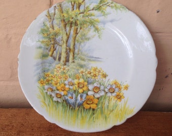 Vintage plate - Daffodil Time, Shelley