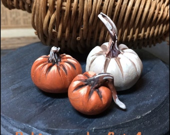 Autumn Harvest Miniature pumpkins