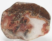Plume Agate Woodward Ranch Texas, Orange Plumes,  Golden Brown Mineral Moss,  Polished Semiprecious Free form stone, Garden Bouquet Agate