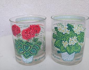Vintage George Briard old fashion glasses barware of Indoor Garden plants set 2
