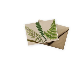 Botanical Fern Blank Notecard