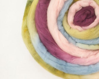 Merino Roving / Top, Pink Purple Olive Blue 3.5oz/100gm