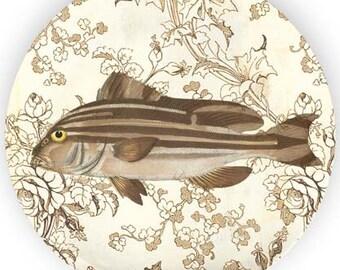 Fish no. 6 melamine plate