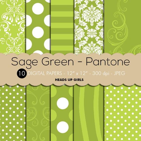 Digital paper set in sage green pantone by headsupgirlscompany Sage green pantone