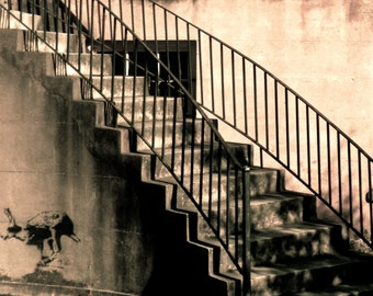 Travel Photography-Running Away From Home In Savannah, Georgia-Rabbit, Architectural, Staircase, Southern, Sepia, Minimalist, Fine Art, Aged