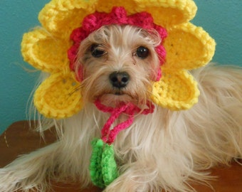 Crocheted Flower Hat for Cat or Dog, Yellow Flower Hat for Pet, Spring Flower Pet Hat