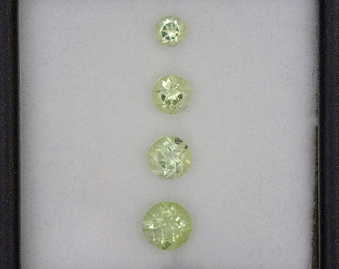 UPRISING SALE! Beautiful Bright Green Amblygonite Gemstone Set from Brazil 1.20 tcw.