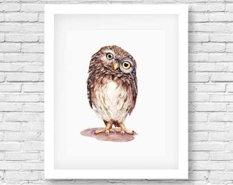 Mr.Wise Guy- owl watercolor print-bird print/ cottage decor/ nursery art