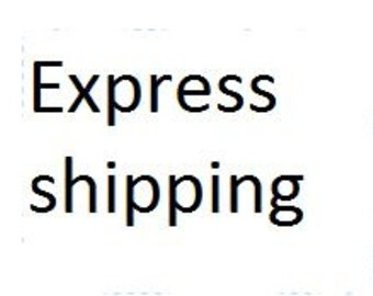 Express shipping for items