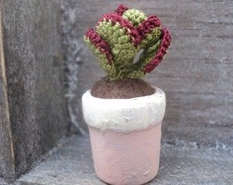 Miniature crochet succulent (no 1)