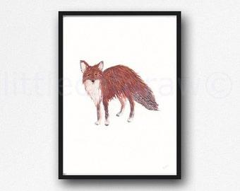 Watercolor Fox Print Woodland Fox Art Print Animal Wall Decor Fox Art Unframed Watercolour Print Littlecatdraw