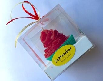 Cupcake Candle gift box