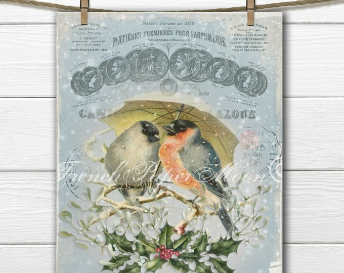 Vintage Christmas Birds Printable Image, Vintage French Collage with Christmas Birds, Instant Download Graphic