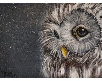 Snowy Owl 5x7 print