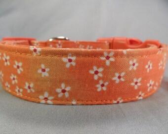 Little Daisy Flowers on Orange Dog Collar