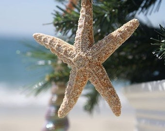 Starfish Ornaments, Nautical Ornaments,Beach Ornaments, Starfish Decor, Beach Christmas Decor