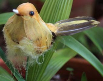FEATHERED BIRD - Yellow - Decorative Crafts