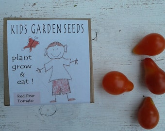 Childrens garden kits red pear tomato kids party favors learning toy birthday party educational toys birthday favor party supplies seed kit