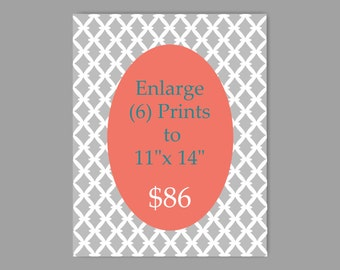 Enlarge Any Six Prints to 11 x 14 Prints for 86 Dollars - Choose Any Prints and Enlarge to 11 x 14 - Choose Colors